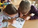 Mokomės tyrinėdami, atlikdami bandymus ir eksperimentus